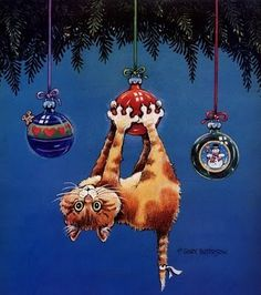 Gary Patterson Cats christmas | Funny Cats by Gary Patterson ~ Love-sepphoras | Merri Christmas!
