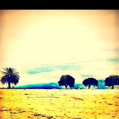 Santa Barbara, California. Resting my weary soul for a while :)