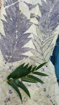 Manche Pflanzen wollen garkeiner Farbe abgeben.Aber die Blätter des Essigbaumes dafür heftig....schön!