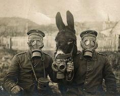 skeleton verdun world war 1   Gas Mask Soldier