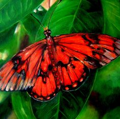 Moth, Butterfly, Paintings, Canvas, Animals, Butterflies, Animales, Paint, Animaux