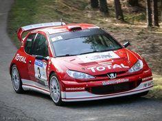 Peugeot 206 WRC Gr. FA-8W - Dominique DE MEYER : Eric SGARRONI