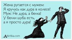 Жена ругается с мужем: Я кручусь как дура в колесе! Муж: Не дура, а белка! У белки шуба есть, а я просто дура!