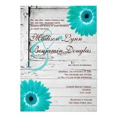 Rustic Country Barn Wood Wedding Invitations with a distressed white barn wood background with turquoise/teal gerber daisy in the corners.  ♥ For more rustic wedding invitations see http://www.zazzle.com/rustic+wedding+invitations?rf=238252963030229232&tc=wpz  ♥