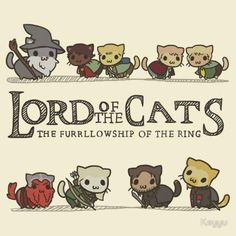 kitty cat funny animals cute adorable lord of the rings movie cats LOTR hobbits kitten animal feline kittens felines gandalf kitties furry Furries elfs thehobbit thecatalogues lordofthepurrs Legolas, Thranduil, Gandalf, Tauriel, Aragorn, Crazy Cat Lady, Crazy Cats, Film Anime, Bon Film