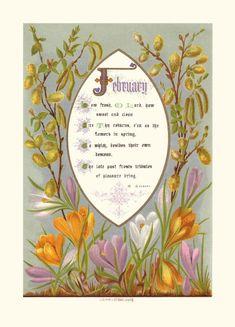 February Birthstone Meaning | Months in the Calendar - February, Birthstone Amethyst