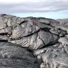 Lava crust splits and magma pours out Nature Gif, Science And Nature, Life Science, Lava Lamp For Kids, The Floor Is Lava, Lava Flow, Natural Phenomena, Amazing Nature, Mother Earth