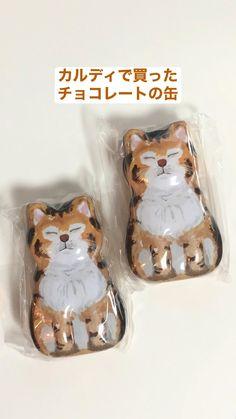 Cat Memes, Lunch Box, Chocolate, Cats, Illustration, Gatos, Cats Humor, Bento Box, Chocolates