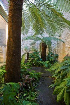 Bart & Pieter | Tuinarchitectuur - mini patio met koud regenwoud