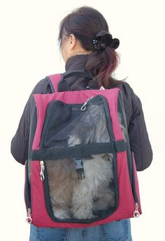 Dog Carrier Backpack or Carrier Sling? It's a Matter of Convenience - Top Dog Tips