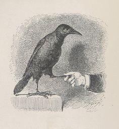 Stop. Bêtes et gens. Fables et contes humoristiques à la plume et au crayon. 2e série 1880