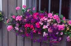 14 Window Gardens That Could Be Described In One Word - Magnificent - Top Inspirations