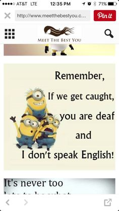 MINIONS ARE CUTE AND AWESOME