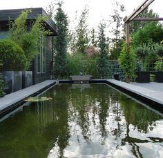Een pad naar de achtertuin via beton tegels 100 200cm antrasiet hovenier tilburg udenhout breda - Bassin tuin ontwerp ...