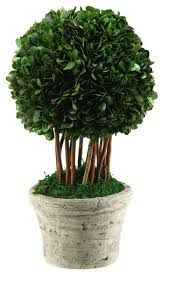topiary quotes - Google Search