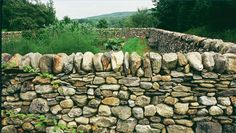 I would really love to have at least a partial stone wall around the house and or garden.