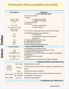 Cálculo del patrimonio neto en el cierre del ejercicio 2012 II