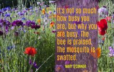 It's not so much how busy you are, but why you are busy. The bee is praised. The mosquito is swatted.