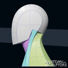 ArtStation - Head and Neck Form - Step by step, Anatomy For Sculptors Facial Anatomy, Head Anatomy, Anatomy Study, Anatomy Art, Anatomy Reference, Anatomy Organs, Anatomy Sketches, Anatomy Drawing, Game Character Design