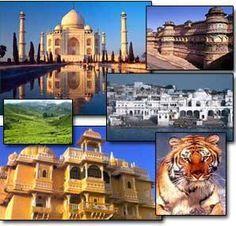 Hotels-live.com : Galerie vidéos sur l'Inde http://www.hotels-live.com/videos/inde/ #Vidéos #Voyages via Hotels-live.com https://www.facebook.com/Hotelslive/photos/a.176989469001448.40098.125048940862168/1641952349171812/?type=3 #Tumblr #Hotels-live.com