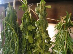 Traditional Methods of Preserving Homegrown Herbs