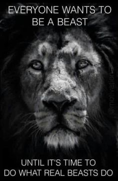 Lion Hearted ❤ 👑