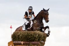 Libby Law's photo of Annabel Wigley at Kihikihi Horse Trials Cross Country, Trials, Equestrian, Horses, Sport, Day, Life, Cross Country Running, Deporte