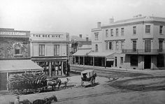 Bee Hive Corner,north east corner of Rundle and King William Streets,Adelaide in South Australia in Adelaide South Australia, Western Australia, Old Pictures, Old Photos, Aussie Australia, City Of Adelaide, Williams Street, King William, Local History