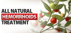 8 Natural Hemorrhoid Treatments - ProgressiveHealth.com
