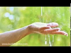 Sons da Natureza com Som de Chuva e Música Relaxante para Meditação