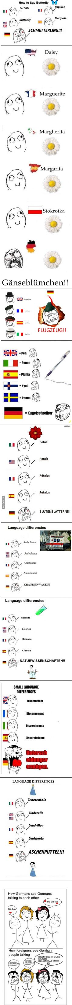 Germans and their angry language