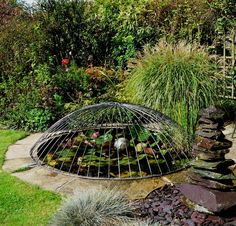 An image of a beautiful pond with a child safety pond cover with a stylish, and well proportioned Dome Design, made from galvanized steel.