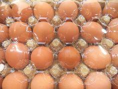 Berbelanja Telur untuk paskah nanti memang sangat tepat jika dilakukan dari sekarang dan Hero menyediakan banyak jenis Telur sesuai kebutuhanmu  Ayo berbelanja telur di store Hero dan pilih mana Telur pilihanmu untuk merayakan Easter nanti. Do you like Egg, Fresh People? #HeroEaster