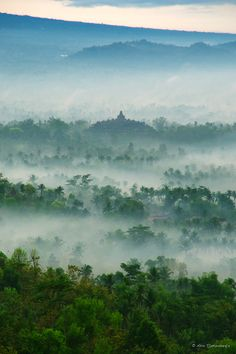 Borobudur Temple in the mist, Central Java, Indonesia.