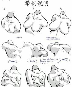 All sizes matter Drawing Female Body, Body Reference Drawing, Human Drawing, Anatomy Reference, Art Reference Poses, Figure Drawing, Art Poses, Drawing Poses, Drawing Sketches