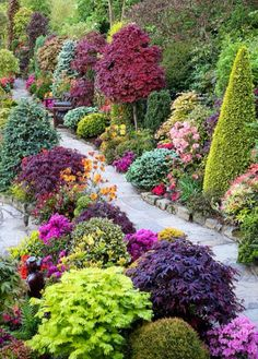 La belleza de la naturaleza manifestada!! ♡