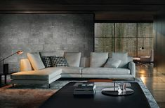 This segmented rug illustrates that I like grey gray rug with gray sofa better than caramel color. Or any other color.