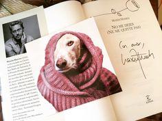 Maravilloso proyecto que hacen las chicas de @lasmuyperras echad un vistazo a su perfil para más info. Mi colaboración ha sido comprando el último libro de @maximhuerta  Tu colaboración ayudará a muchos galgos  #lasmuyperrasrescateanimal #sosgalgos #galgos #galgosofinstagram #instadog #dogstagram #dogsofinstagram #love #petlover by furryandclassy