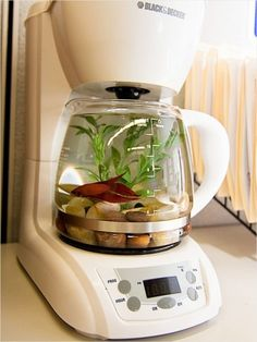 Get a old coffee pot and cut the cord off so it will not tern on.And get a little bit of rock from the pet store and put about a inch in the bottom.Buy a fake plant in the middle.Then get a Berta fish or any kinda fish you won't an put it any where.Good luck have fun.