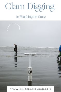 In the Pacific Northwest Clamming is a family-friendly, dog-friendly activity that just about anyone can do. Check out the blog with everything you need to know to start clam digging in the pacific Northwest. Camping List, Camping Meals, Camping Hacks, Washington State Parks, Camping Essentials, Camping With Kids, Clams, Campsite, Pacific Northwest