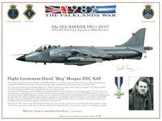 The Falklands War BAe Sea Harrier FRS. 1 ZA177. 899/800 Naval Air Squadron HMS Hermes.  Flight Lieutenant David 'Mog' Morgan DSC RAF.  Signed print. HJ Dempsey A3 print, exclusive to the Fleet Air Arm Museum. £19.95 inc VAT