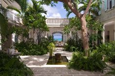 Coral House - Luxury Villa for rent in Turks and Caicos, Caribbean