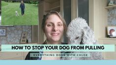 *Check out this video of how to stop your dog from pulling.* Topics in this video include 3 great tips and techniques to get your dog to stop pulling on the . Your Dog, Walking, Tips, Walks