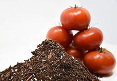 Organic Potting Mix by Perfect Plants for All Plant Types - for Indoor and Outdoor Use, Great for Veggies, Herbs, and Cannabis Plants Edible Plants, All Plants, Types Of Plants, Indoor Plants, Planting Vegetables, Fruits And Vegetables, Veggies, Garden Soil, Lawn And Garden