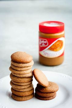 Homemade Speculoos Cookies--warm, cinnamony, spicy bites of pure happiness