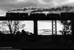 639 Victorian Railways Steam at Taradale, Victoria, Australia by Maldon Victoria, Corks, Old Town, Cheers, Countryside, Trains, Melbourne, Cartoons, Victorian