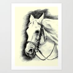 Horse-portrait Art Print by Vargamari - $17.68 - Charcoal horse-portrait, from the Horse-series