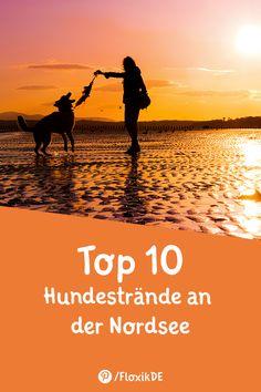 Die Top 10 der Hundestrände an der Nordsee - Floxik Premium Hundeprodukte Train Travel, Trick Or Treat, Doodles, Enorm, Dogs, Maputo, Camper, Treats, Dog Body Language