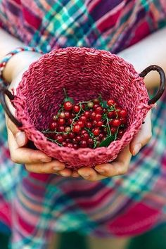 red basket containing berries