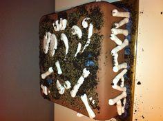 Stoere dino taart voor een archeoloog in de dop / dino bones cake